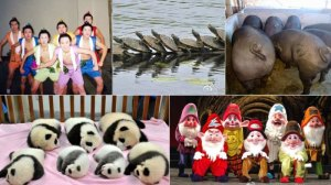 Sina Weibo users liken their seven new leaders to these images.